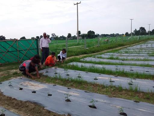 कृषक वर्गीकरण अनलाइनमार्फत