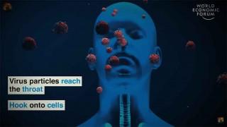 विश्व स्वास्थ्य संगठनले भन्याे :  'आगामी महिना कोभिड समस्या थप बढ्छ  '